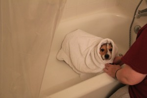 The indignities of bath-time.